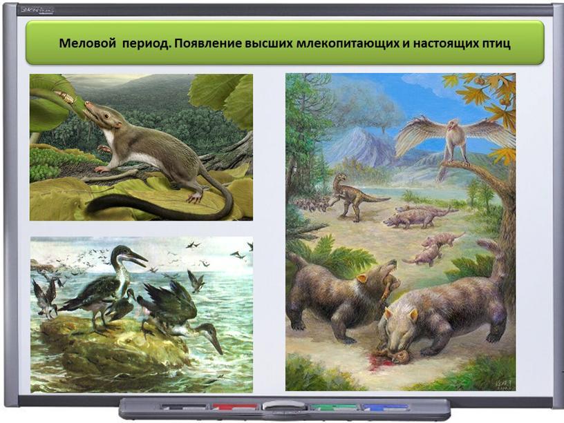 Меловой период. Появление высших млекопитающих и настоящих птиц