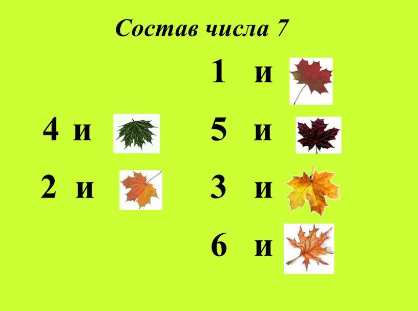 Состав числа 7 и 3 2 и 5 1 и 6 и 2 3 и 4 6 и 1