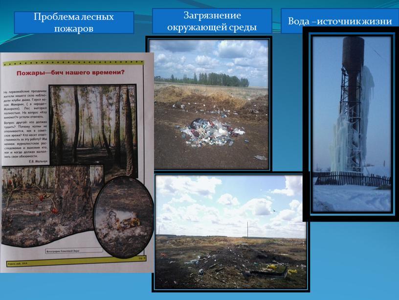 Проблема лесных пожаров Загрязнение окружающей среды