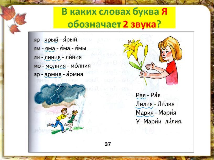 Мы читаем! В каких словах буква