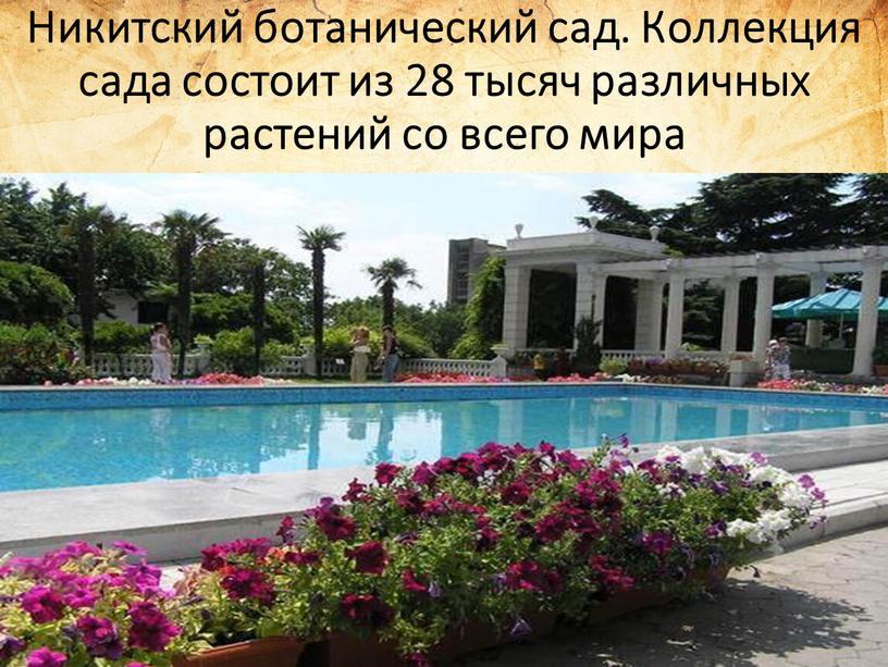 Никитский ботанический сад. Коллекция сада состоит из 28 тысяч различных растений со всего мира