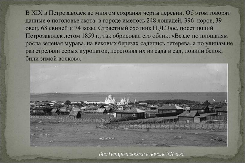 Вид Петрозаводска в начале XX века