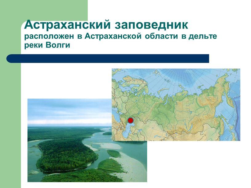 Астраханский заповедник расположен в
