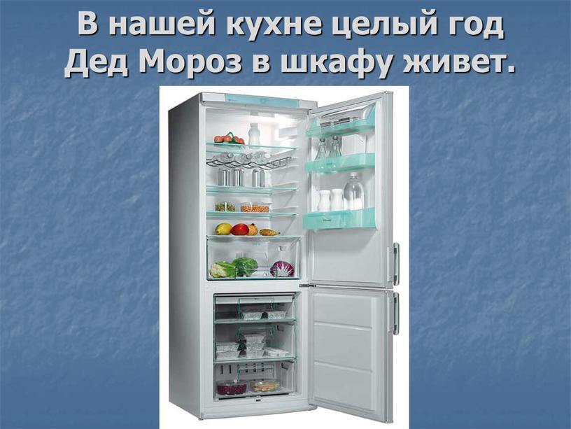 В нашей кухне целый год Дед Мороз в шкафу живет