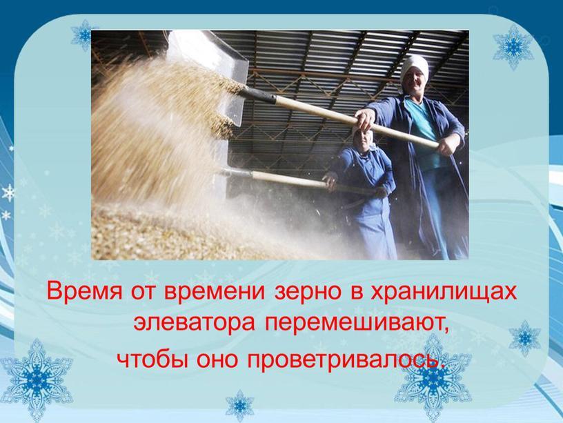 Время от времени зерно в хранилищах элеватора перемешивают, чтобы оно проветривалось