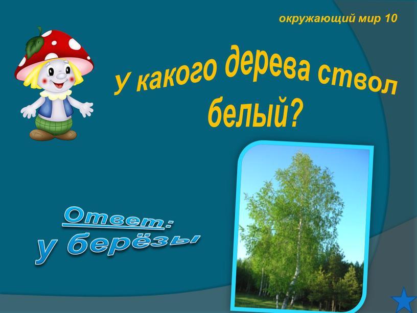 У какого дерева ствол белый? Ответ : у берёзы