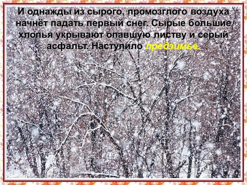 И однажды из сырого, промозглого воздуха начнёт падать первый снег