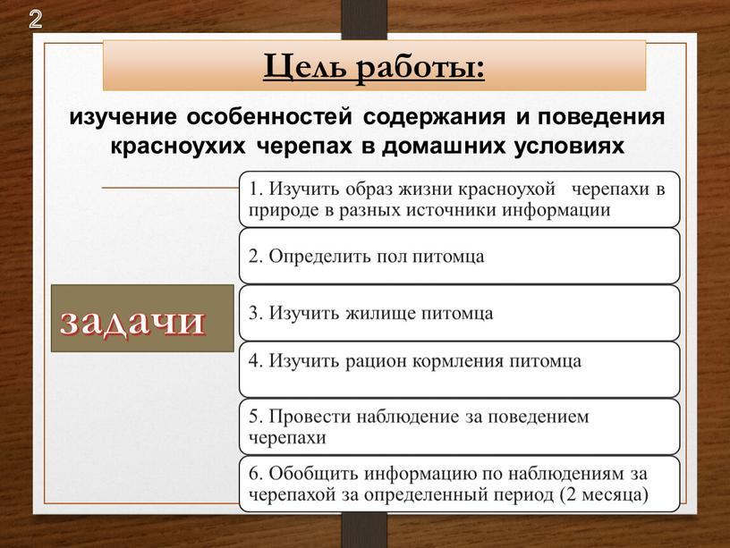 Цель работы: изучение особенностей содержания и поведения красноухих черепах в домашних условиях задачи 2