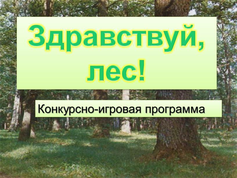 Конкурсно-игровая программа Здравствуй, лес! 1