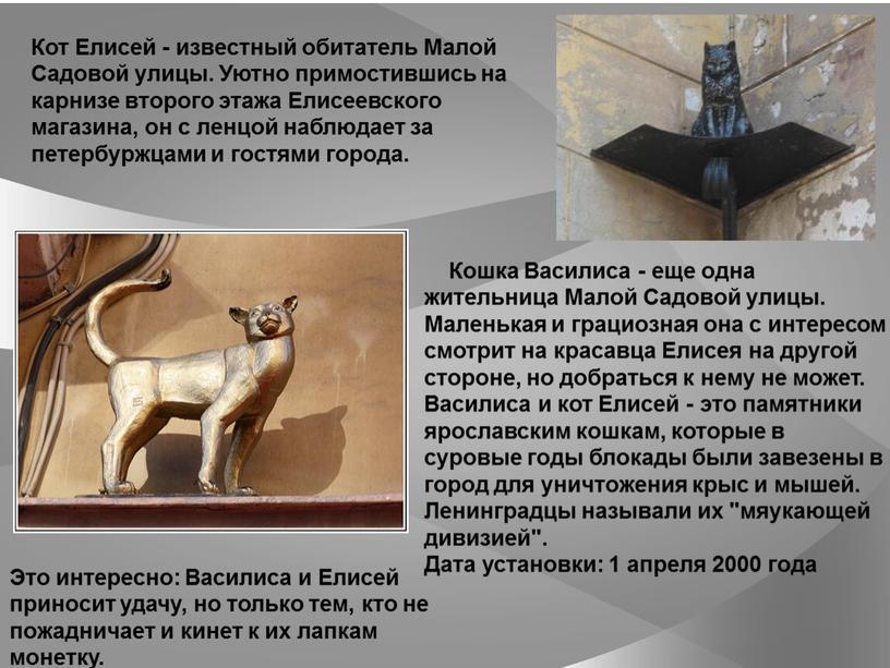 Кошка Василиса - еще одна жительница