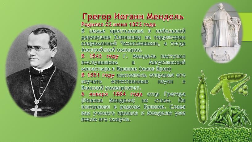 Грегор Иоганн Мендель Родился 22 июня 1822 года