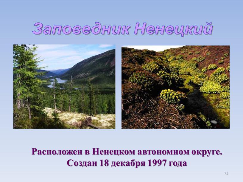 Заповедник Ненецкий Расположен в