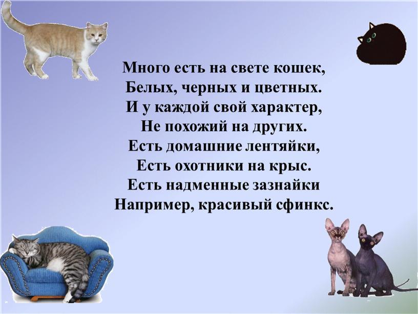 Много есть на свете кошек, Белых, черных и цветных