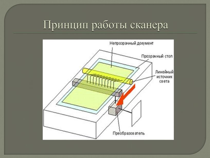 Принцип работы сканера