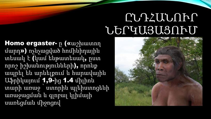 Homo ergaster- ը («աշխատող մարդ») ոչնչացված հոմինիդային տեսակ է (կամ ենթատեսակ, ըստ որոշ իշխանությունների), որոնք ապրել են արևելքում և հարավային Աֆրիկայում 1,9-ից 1