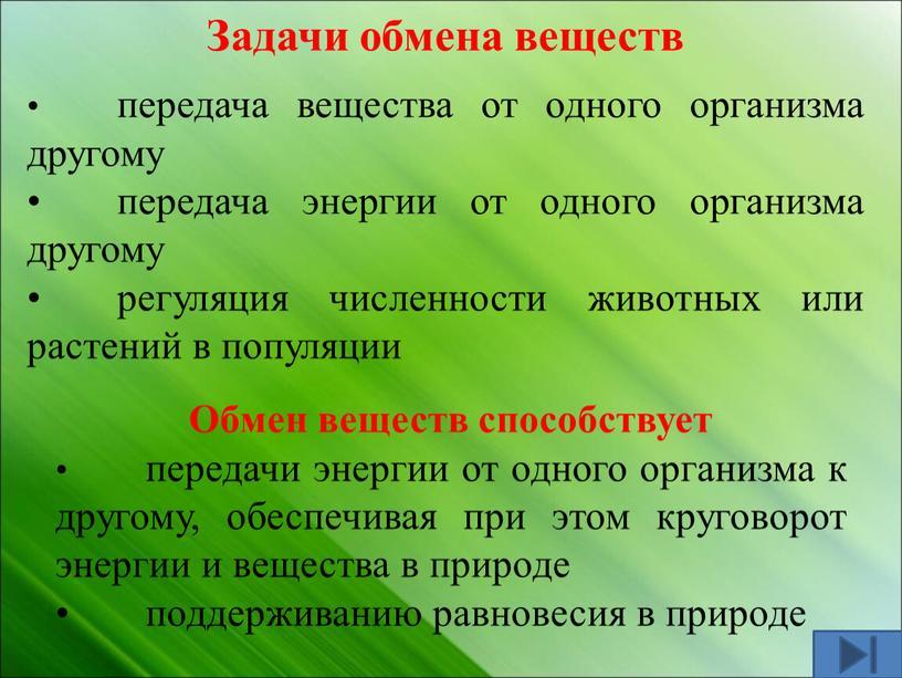 Задачи обмена веществ • передача вещества от одного организма другому • передача энергии от одного организма другому • регуляция численности животных или растений в популяции