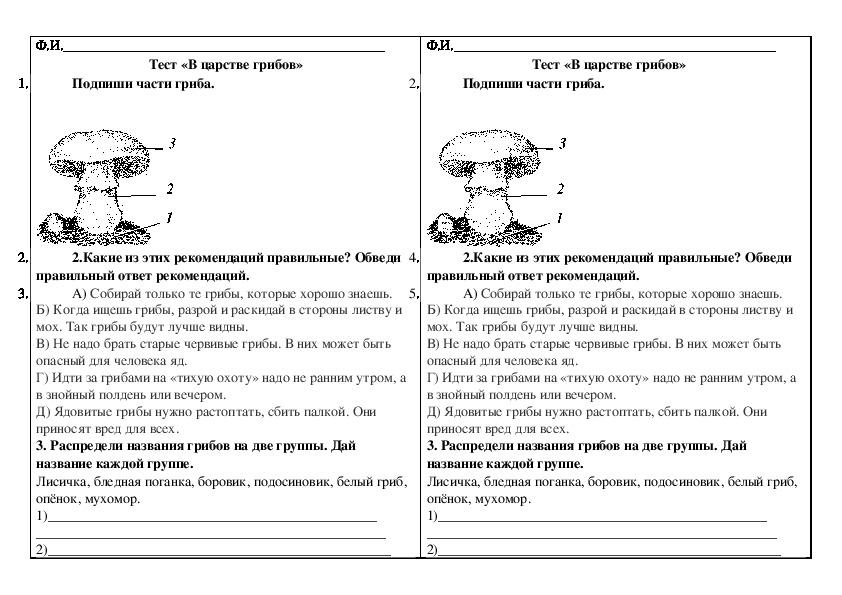 """Тест по окружающему миру """"В царстве грибов""""  (3 класс, окружающий мир)"""