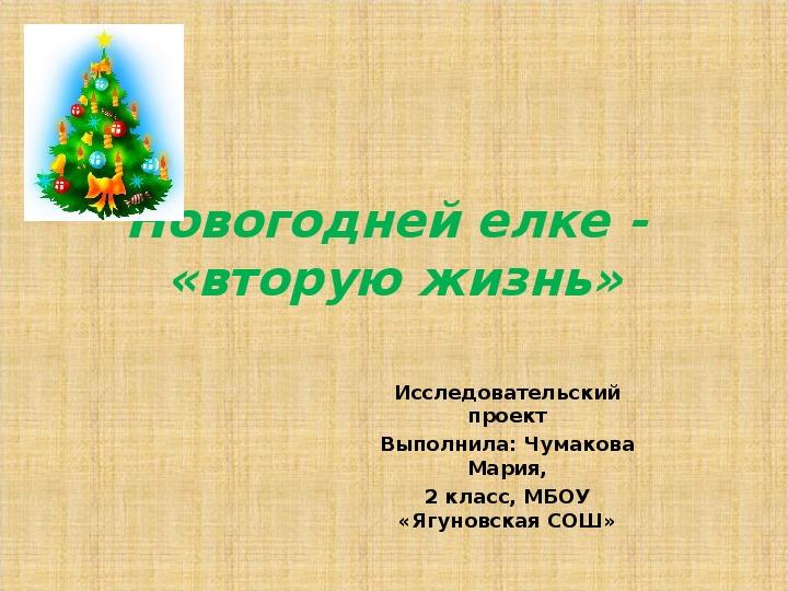 Новогодней елке - вторую жизнь (исследовательский проект + презентация)