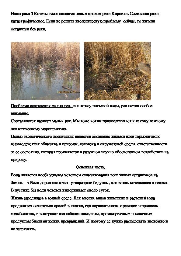 """Исследовательская работа на тему """"Экологическая проблема реки """""""
