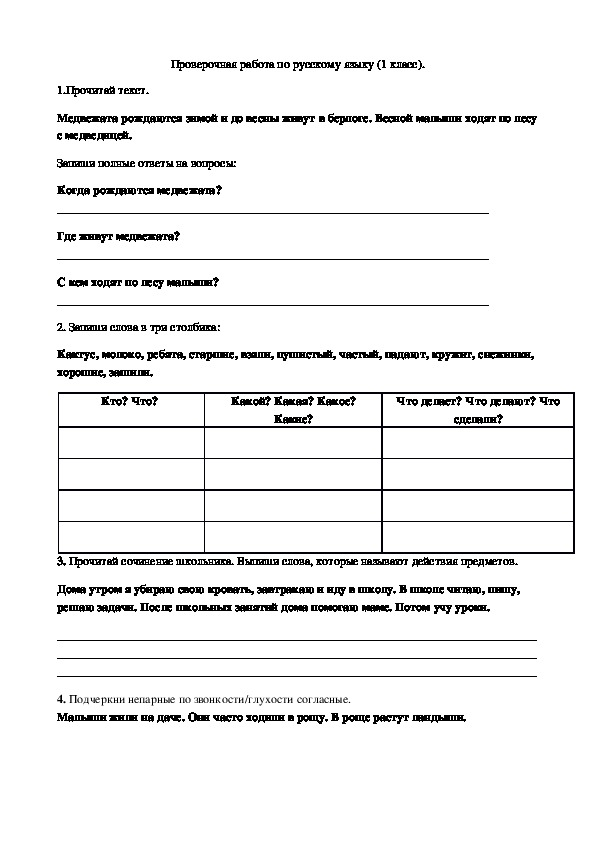 Проверочная работа по русскому языку (1 класс)