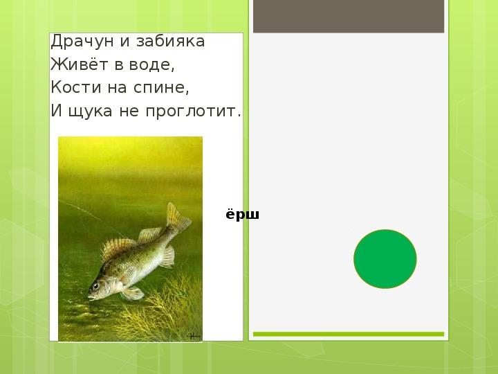 """Методическая разработка урока окружающего мира, тема: """"Кто такие рыбы?"""" 1 класс"""