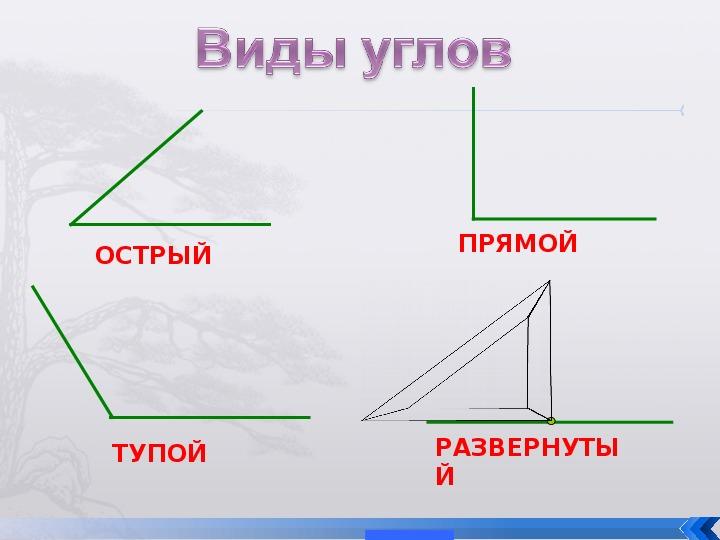 """Презентация """"Угол. Виды углов"""" (5 класс)"""