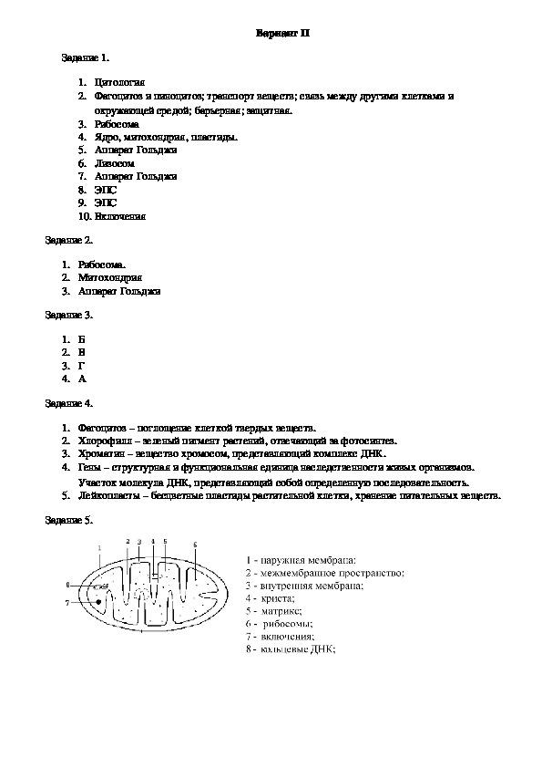 """Самостоятельная работа на тему: """"Строение и функции клетки"""". (9, 10 классы)."""