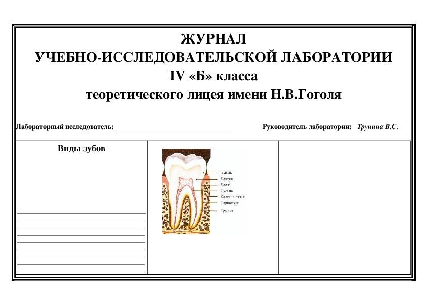 """Дидактический проект урока познание мира по теме: """"Зубы и уход за ними""""(4 класс)."""