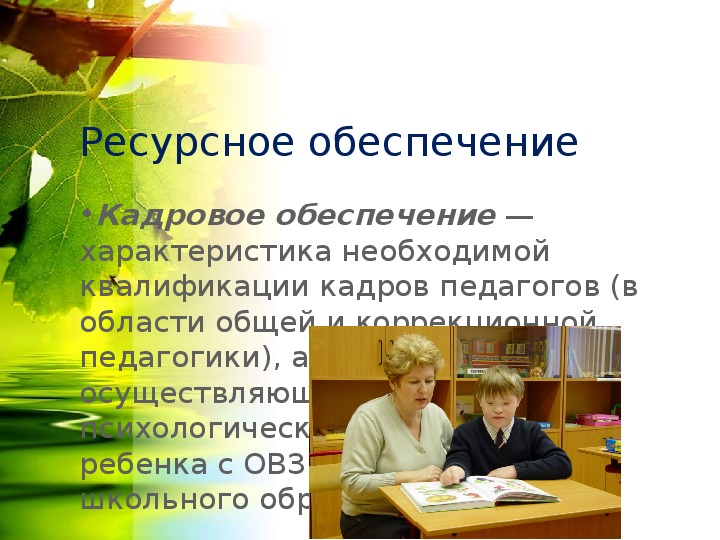 ФГОС обучающихся с ОВЗ и умственной отсталостью: особенности реализации в практике инклюзивного обучения