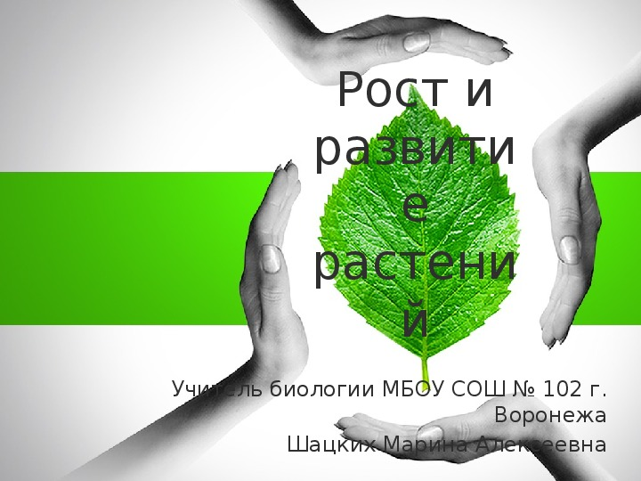 """Презентация по биологии на тему """"Рост и развитие растений"""" (6 класс, биология)"""