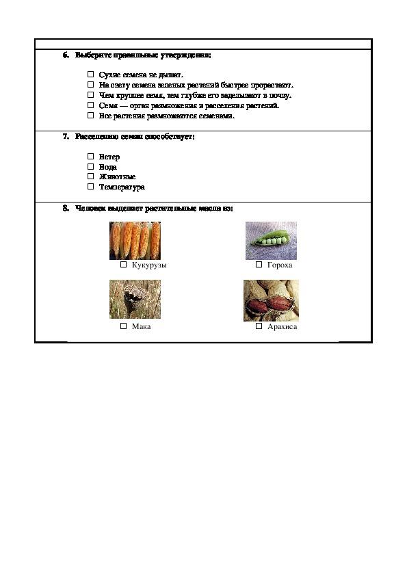 """Контрольное  тестирование по биологии  для 6 класс на тему """" Значение  семян"""""""