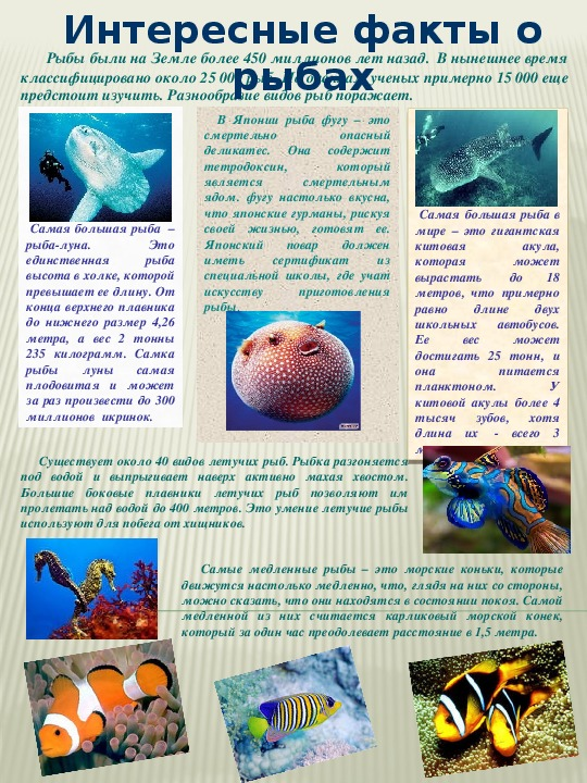 интересные факты про биологию с фото чем