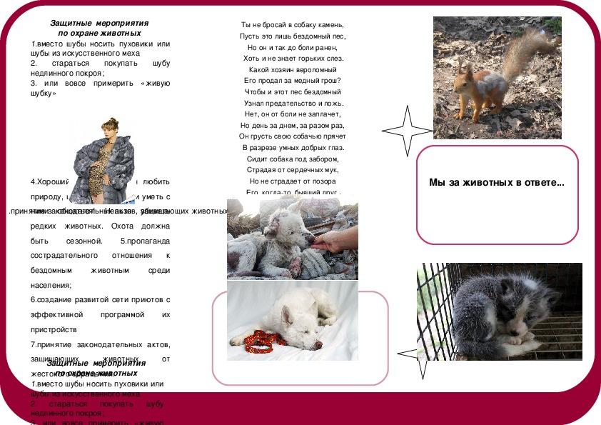 """Воспитательное мероприятие """"В защиту животных"""""""