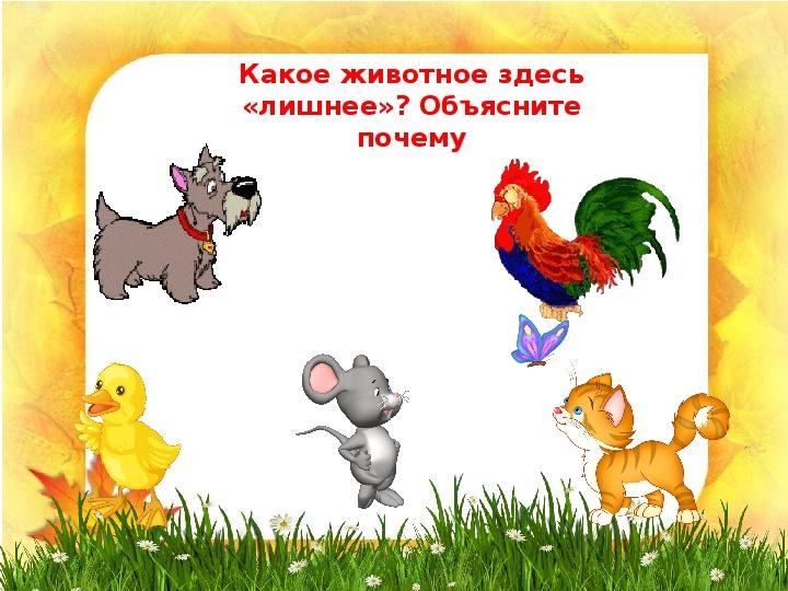 """Презентация """"Дикие и домашние животные"""" (1 класс, окружающий мир)"""