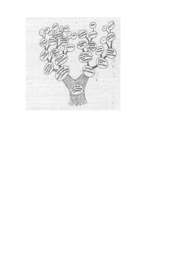 Мастер – класс  Тема: «Формирование экологической культуры на всех предметах базисного учебного плана в начальной школе». Шурова Людмила Симоновна- ВКК. Гимназия им. И.С.Никитина г.Воронеж