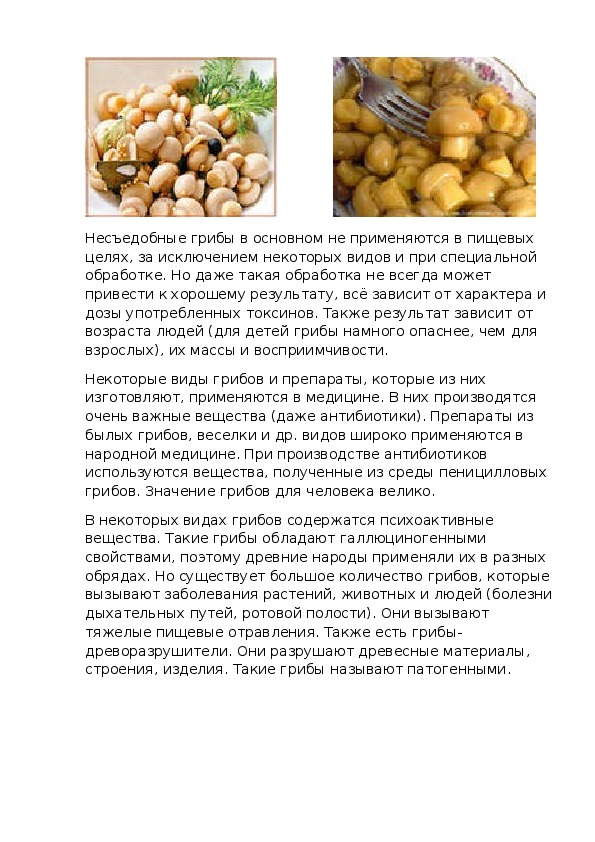 Видовой состав грибов п Елань