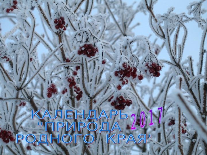 """Проектная работа """"Календарь природы"""""""