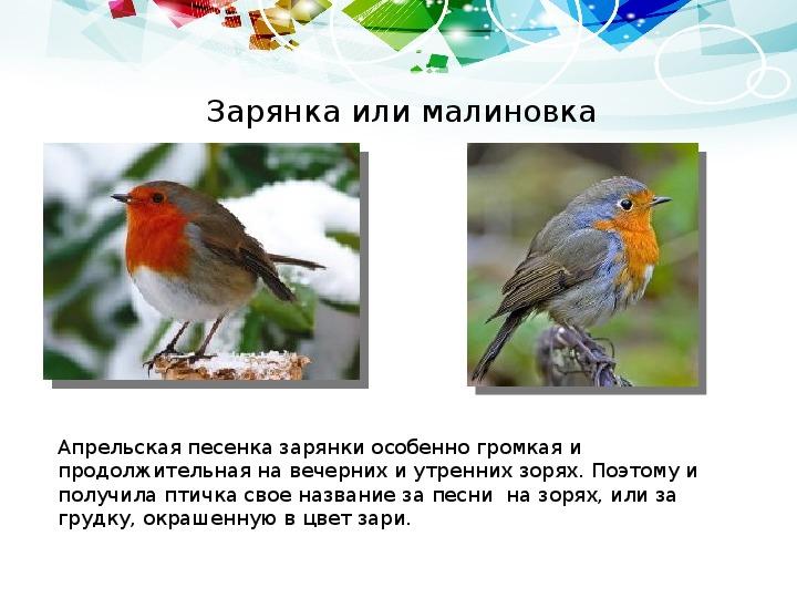 Внеклассное мероприятие «Птичьи имена» (посвященное 1 апреля – Дню птиц) (2 класс, библиотека)