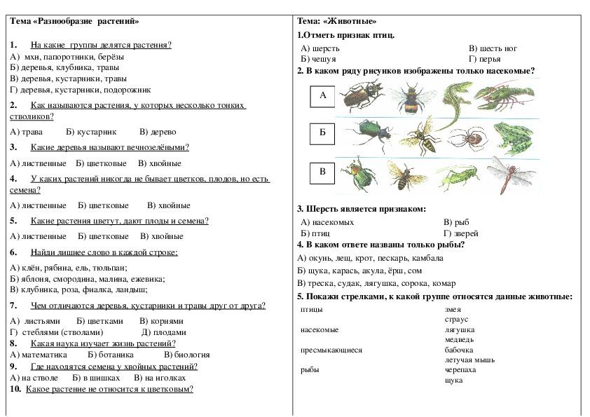 Тест  Тема «Разнообразие  растений и животных»  по окружающему миру для 2 класса.