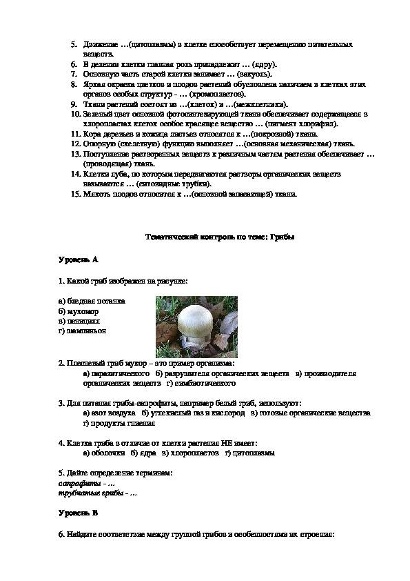 Осуществление проверки знаний по биологии