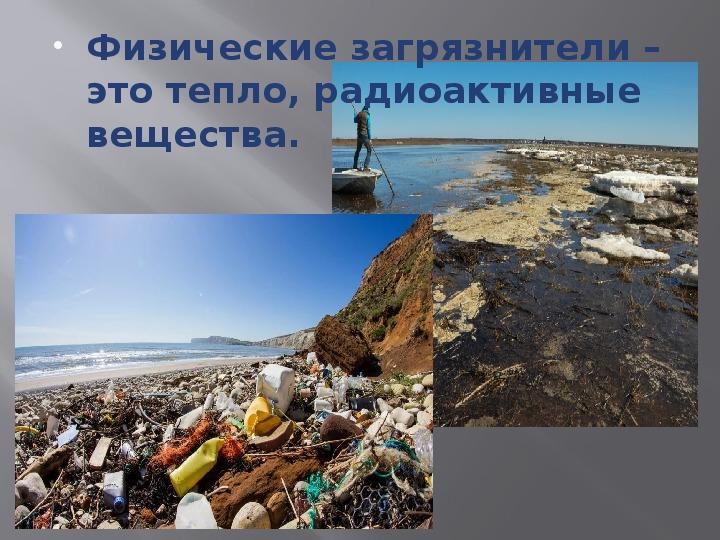 """Учебное занятие по Экологии на тему """"Способы решения современных экологических проблем в рамках концепции «устойчивость и развитие»"""