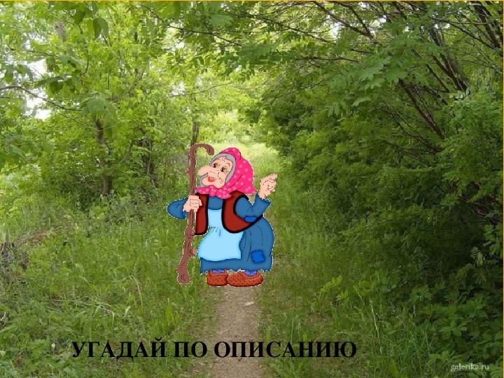 """Внеклассное мероприятие """"По лесным тропинкам"""""""