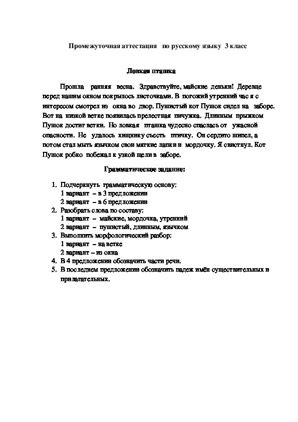 Промежуточная аттестация по русскому языку (3 класс)