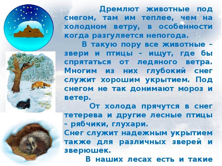 """Презентация """"Есть ли жизнь в воде подо льдом?"""" (1 класс, окружающий мир)"""
