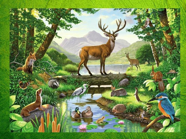 """Внеклассное занятие по экологии. """"Дом, в котором мы  живём."""""""