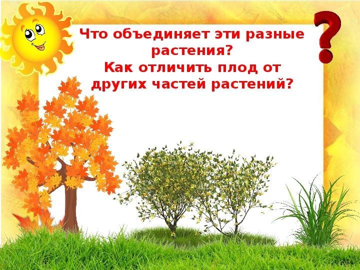 """Презентация """"Как растения расселяются на новые места"""" (1 класс, окружающий мир)"""