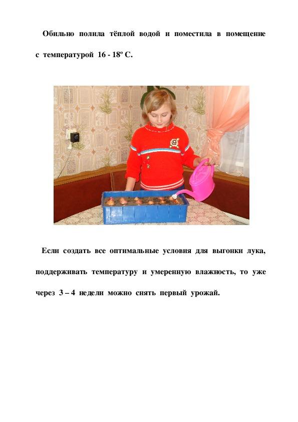 """Социальный проект на тему """"Завтрак на окне"""" (выращивание зелёного лука на окне зимой"""" (1 класс)"""
