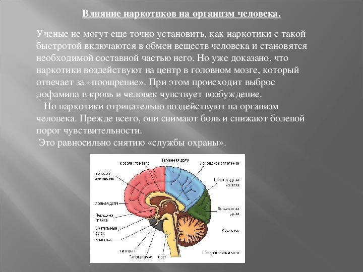 """Презентация и сценарий к классному часу """"Наркомания - общенациональная проблема"""" (10-11 классы)"""