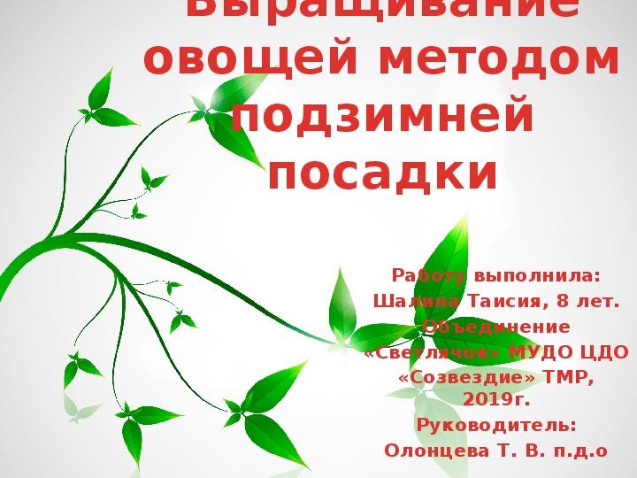 """Презентация по экологическому образованию """"Выращивание овощей методом подзимней посадки""""  ( 1-й класс)"""
