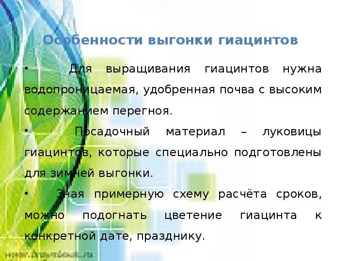 """Учебно-исследовательская работа """"Зимняя выгонка гиацинтов"""""""